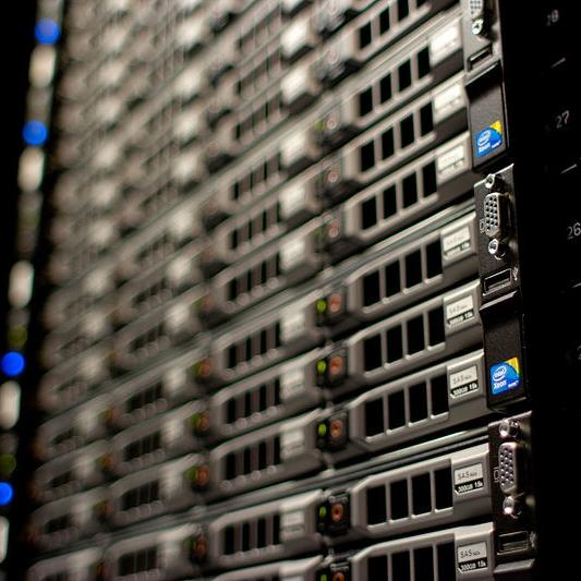 Server e Network